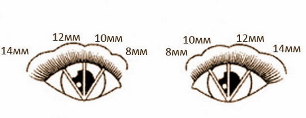 схема наращивания лисьих ресниц