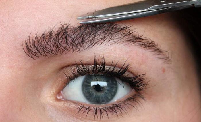 Что нужно знать, чтобы самостоятельно подстричь брови?